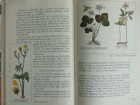 Naturebook2