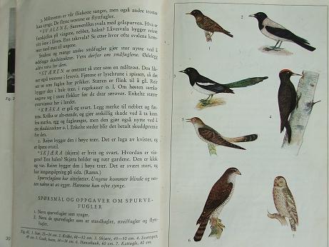 Naturebook3