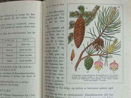 Naturebook4