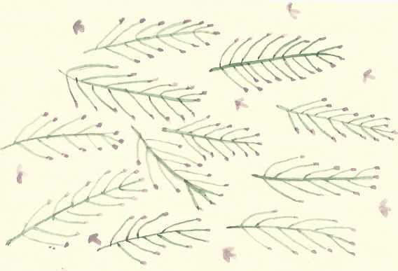 April 19 pattern