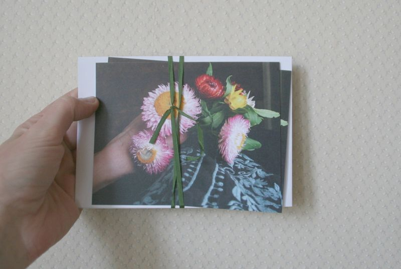 Strawflower cards