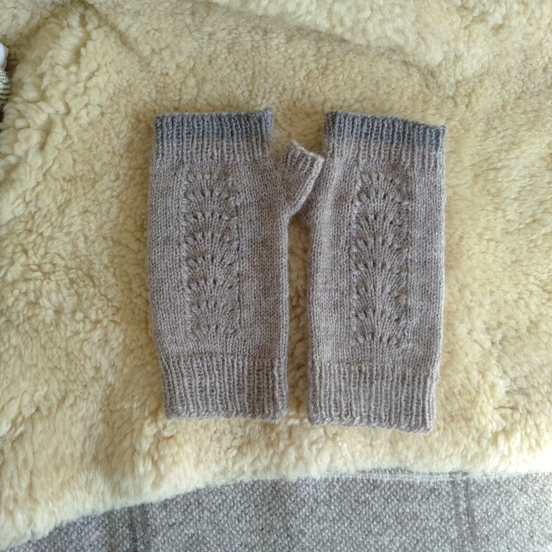 Shell mitts 1