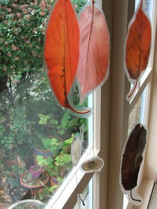Leaf_string